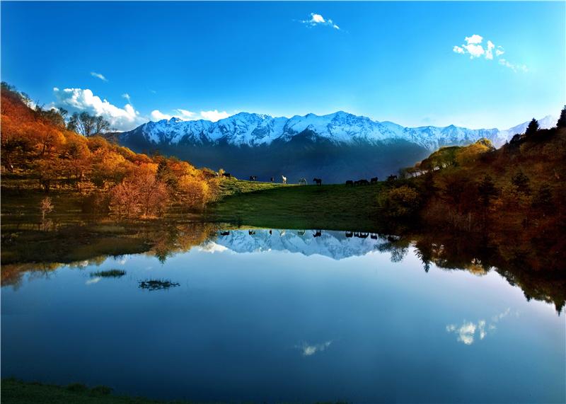 拉尕山——国家AAAA级旅游景区