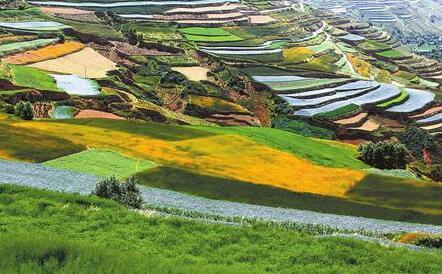 定西通渭县美丽的梯田(图)
