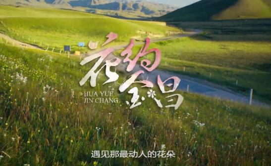 【视频】金昌旅游形象宣传片《花约金昌》