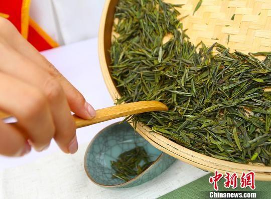 """甘肃陇南""""95后""""茶艺师:传承茶道 静享""""慢""""生活"""