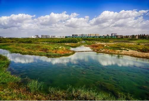 兰州唯一的国家级湿地迎来旅游高峰