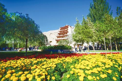 """敦煌城市绿化覆盖率超过41% 民众共享""""绿色福利"""