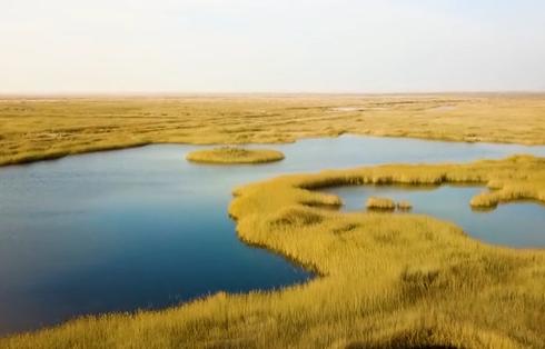 大漠为邻 碧水蓝天青土湖