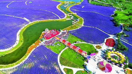 中国镍都·西部花城