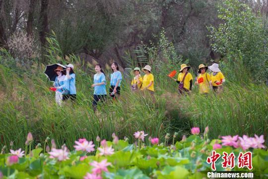图为市民徒步穿越湿地公园,赏如画风光。 钟晓亮 摄