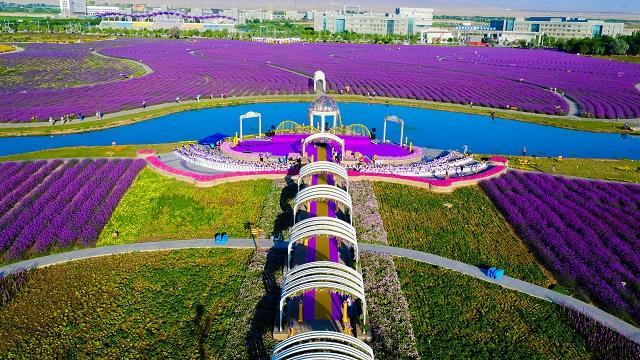 金昌市文化广电和旅游局积极谋划文旅项目 打好产业复工翻身仗