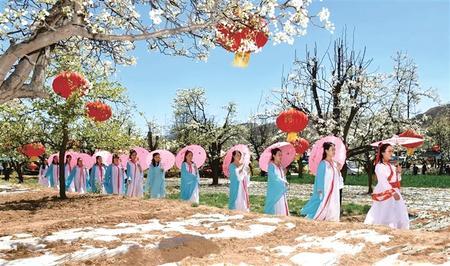梨花展姿迎嘉宾 临洮县龙门镇梨花文化艺术节即将启幕