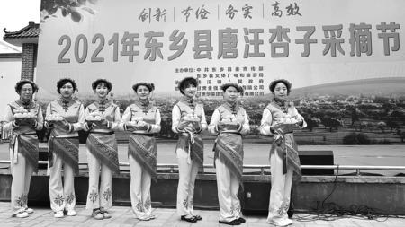 2021年东乡唐汪杏子采摘节开幕