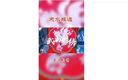 【视频】天水非遗项目:武山刺绣