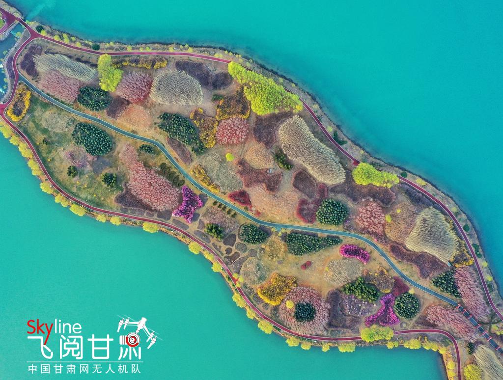 【飞阅甘肃】张掖芦水湾:雨过花开俏争春