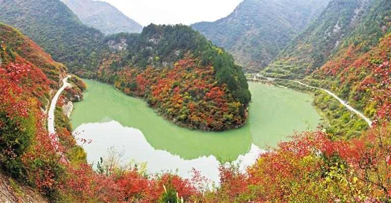 两当红叶:沉淀了春夏,辉煌了深秋